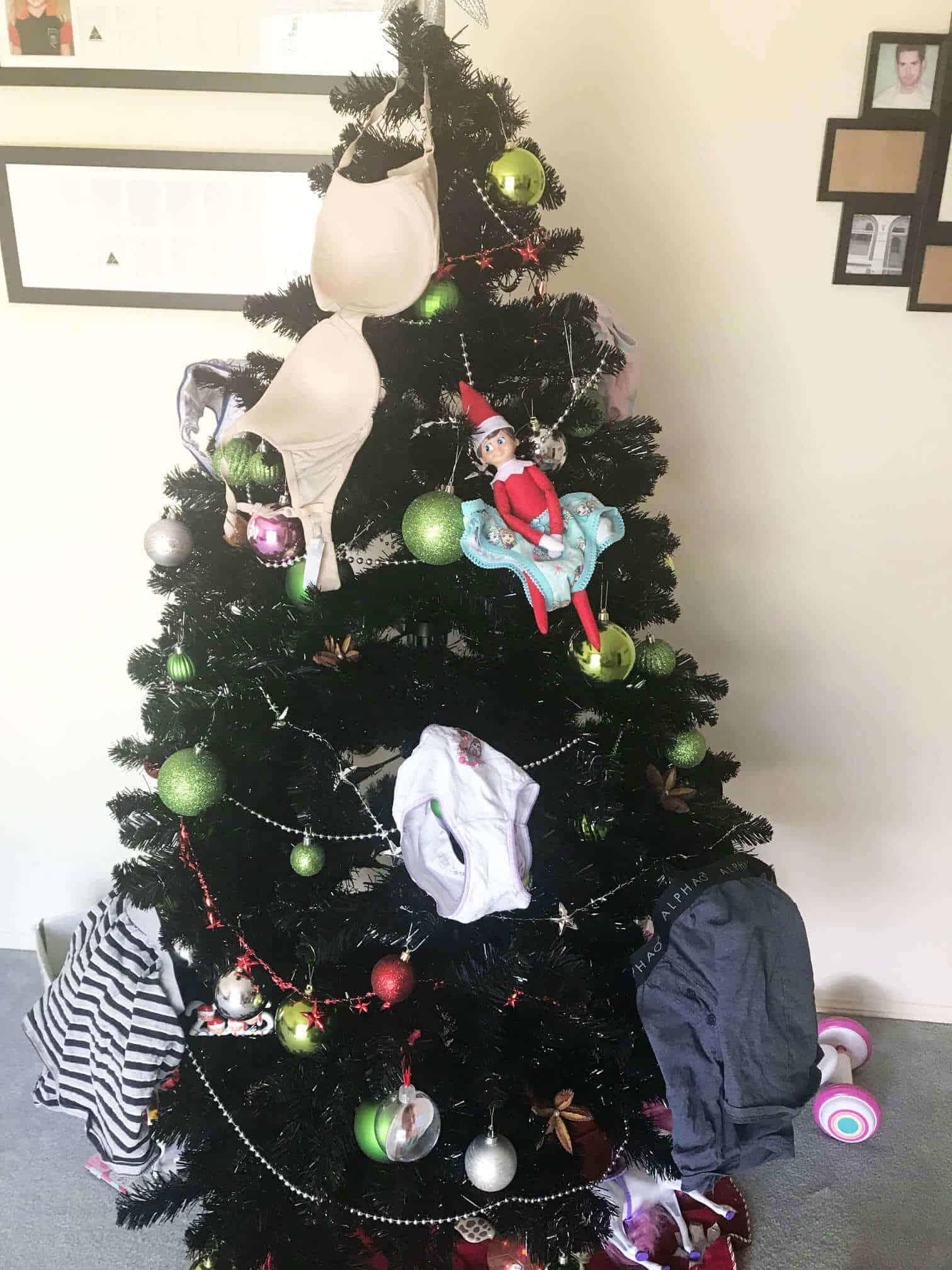 Elf stolen underpants on tree