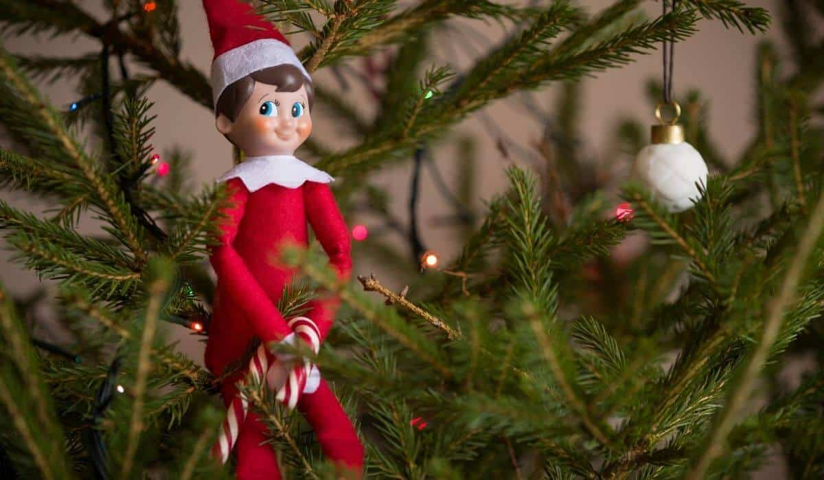 Elf on the shelf planner and elf kit