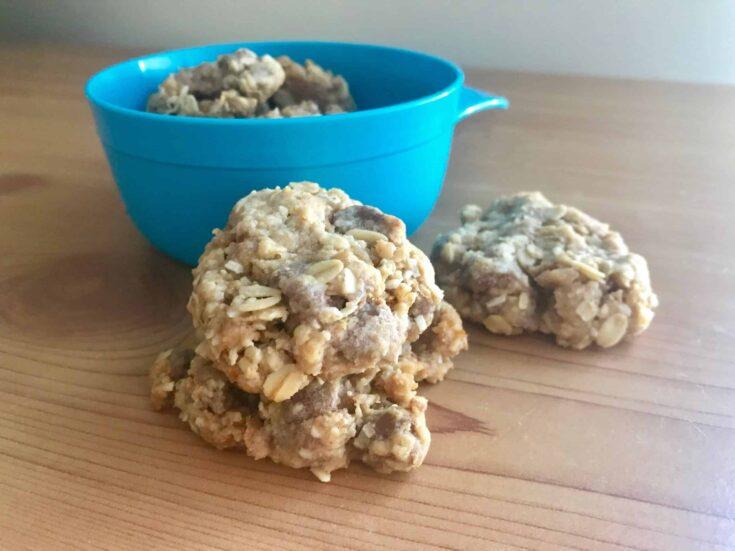 Chocolate Chip Weet-Bix Biscuits