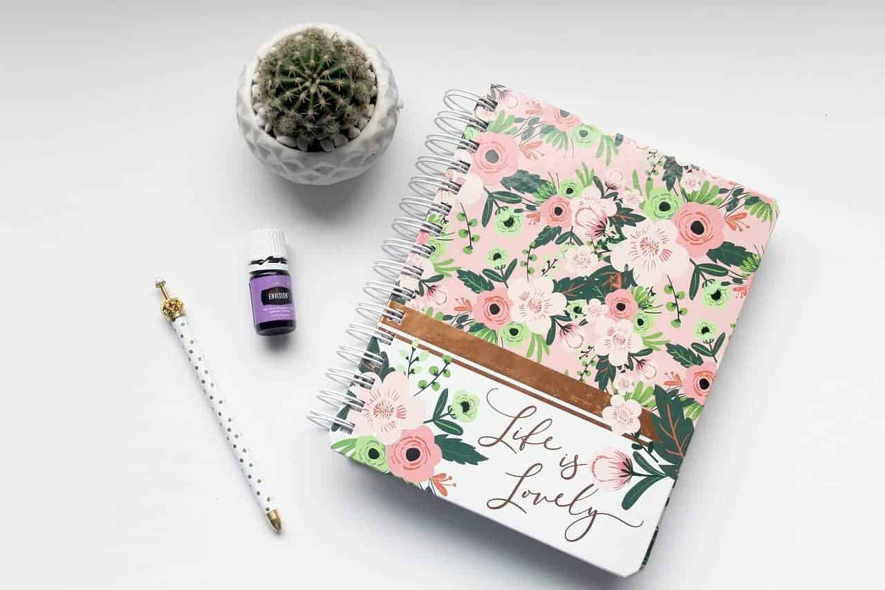 Notepad and plant gift