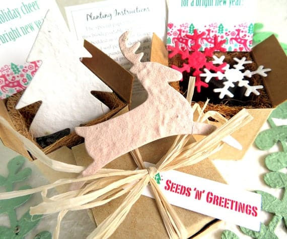 Seed Paper Christmas Planting Kit with Flower Pot