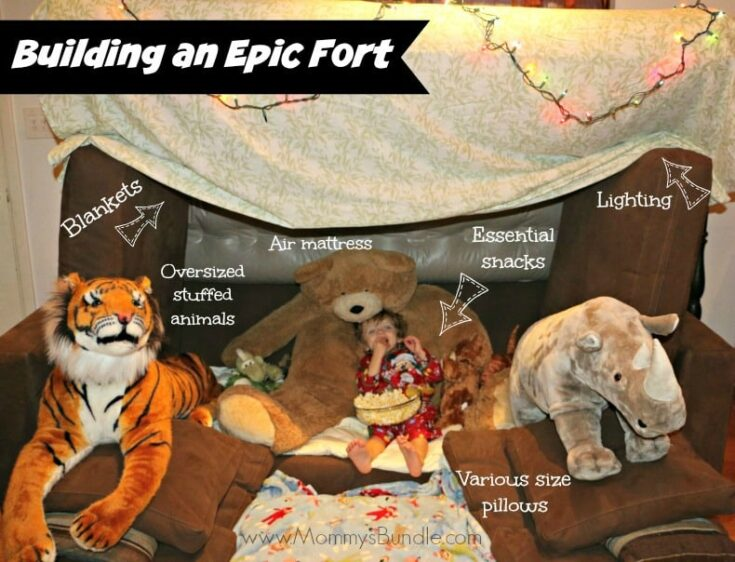 Build a fort essentials1