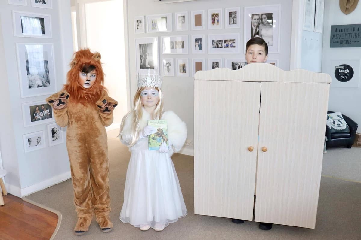 Diy the lion, the witch and the wardrobe costume
