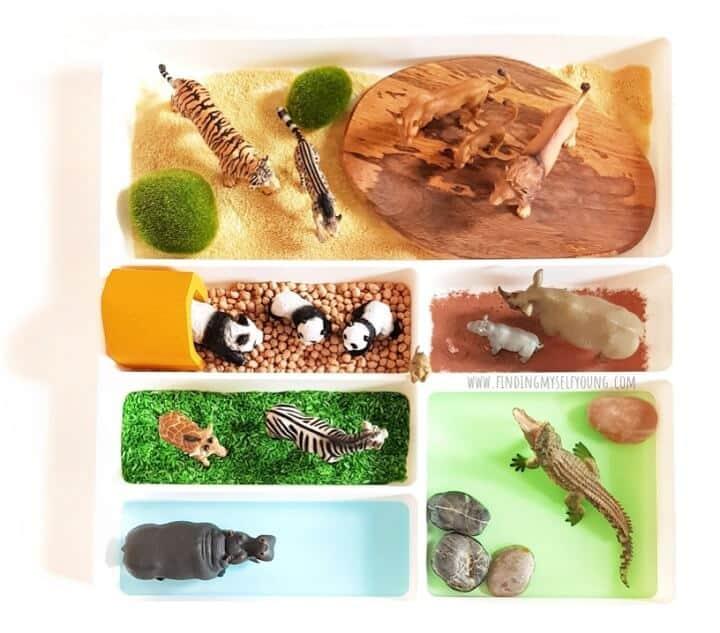 Small world zoo cutlery tray