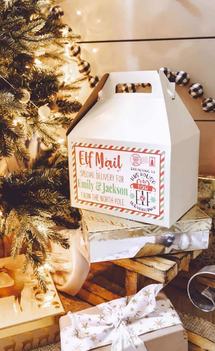 Elf delivery box